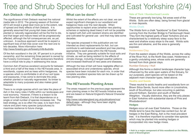 HEYwoods Tree and Shrub species - page 2