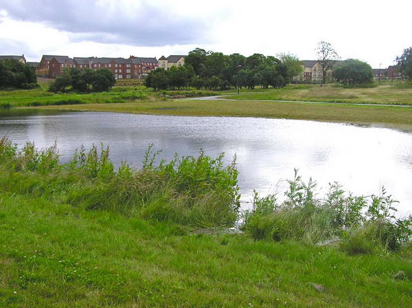 SuDS Basin at Manor Park Sheffield (with thanks to Roger Nowell at SCC)