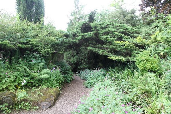 Overgrown Rock Garden at Burnby Gardens