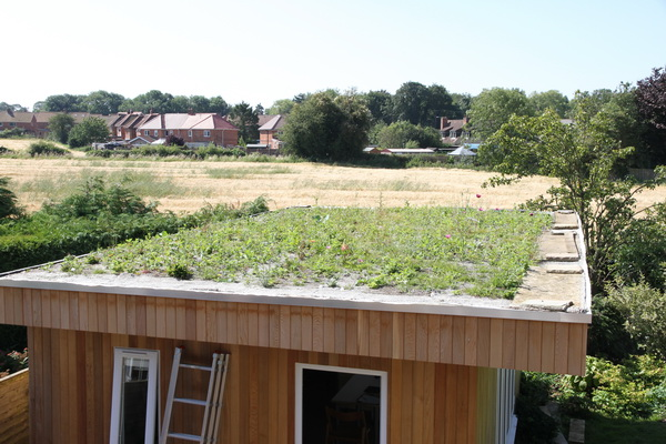 Green roof 2014