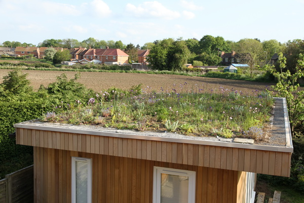 Green roof 2015-05