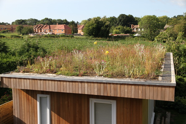 Green roof 2015-07