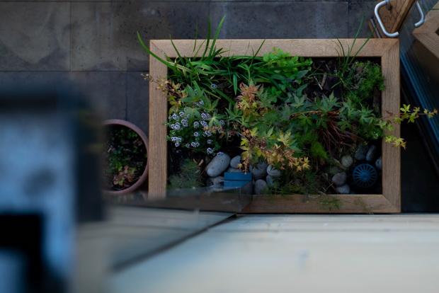 Rain garden planter seen from balcony credit Matt Radcliffe Photography