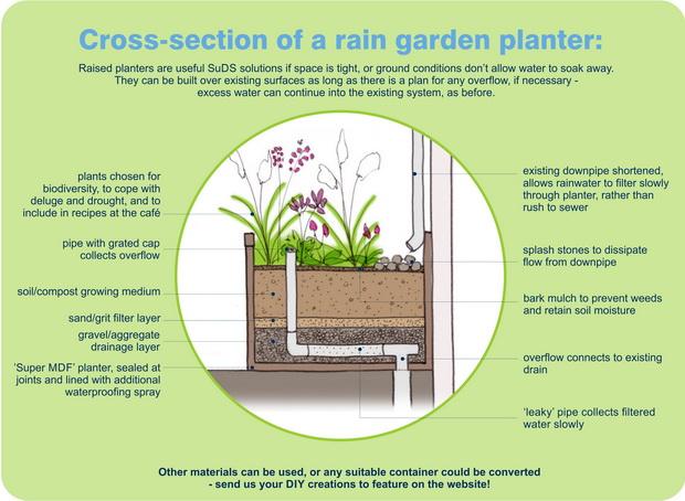 Rain garden planter diagrammatic section