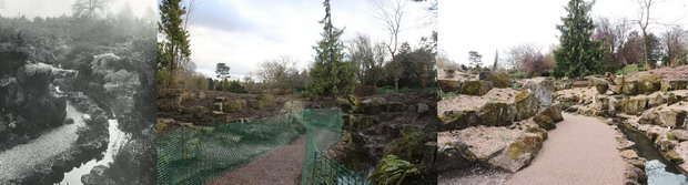 The rockery historic, during clearance and first season after planting.