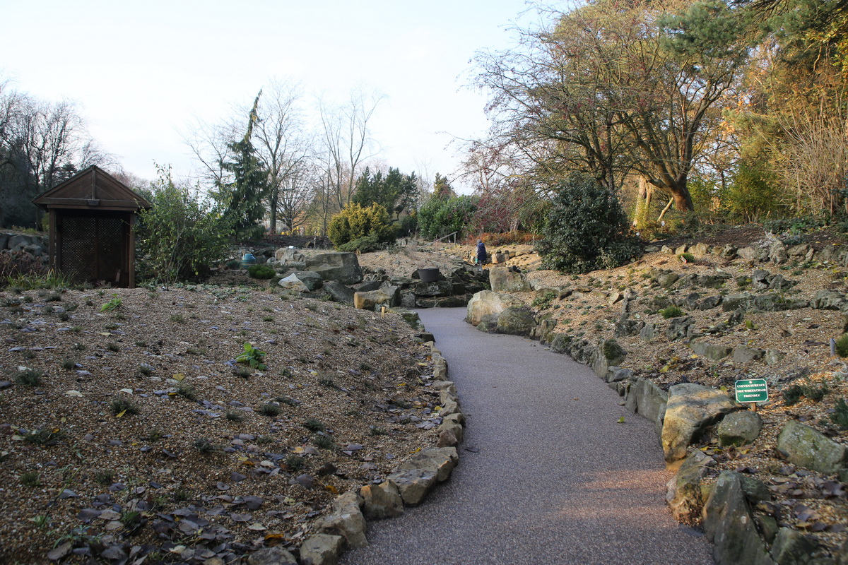 Replanted Rock Garden with accessible path
