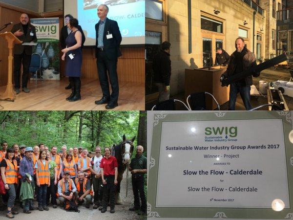 STFC wins the 2017 SWIG Award for Best Project