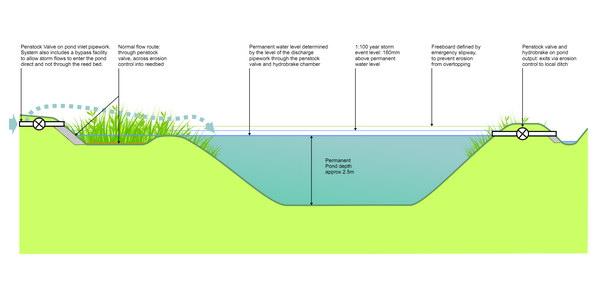 Sustainable Drainage Suds Landscape Design 2b